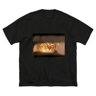 キラーン(ΦωΦ)フフフ… Big silhouette T-shirts