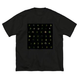 kaleidoscope01 Big silhouette T-shirts