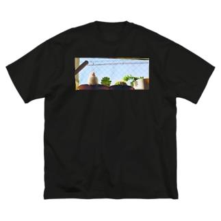 白文鳥のチマフミ Big silhouette T-shirts
