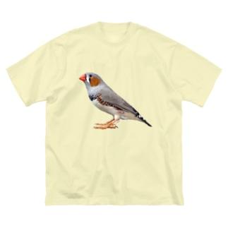 キンカチョウ Big silhouette T-shirts