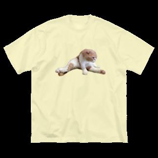 マルティ部屋のリアルMATAWARI  Big silhouette T-shirts