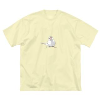 尾曲がり白文鳥 Big silhouette T-shirts