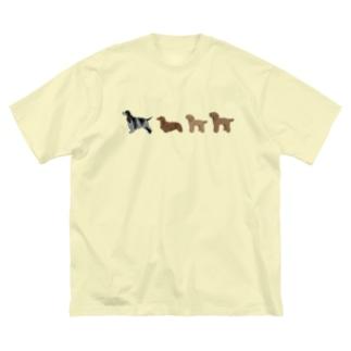 Y様 多頭シリーズ Big T-shirts
