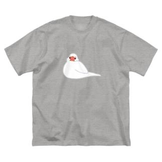 餅白文鳥 Big silhouette T-shirts