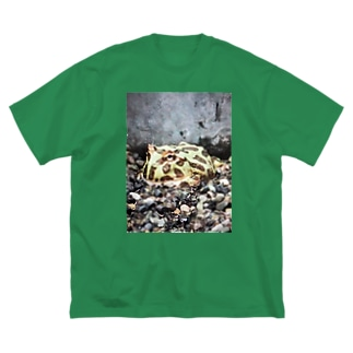 ベルツのガエルくん Big silhouette T-shirts