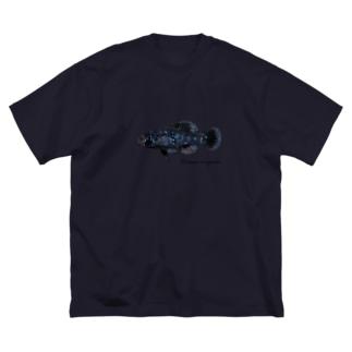 Elassoma evergladei Big silhouette T-shirts