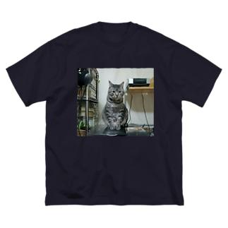 tetora Big silhouette T-shirts