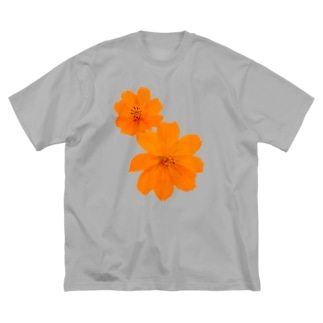 キバナコスモス Big silhouette T-shirts