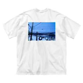 よく見るとリス Big silhouette T-shirts