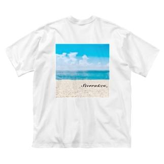 Sterra&co. Big silhouette T-shirts