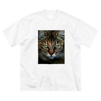 CAT Big silhouette T-shirts