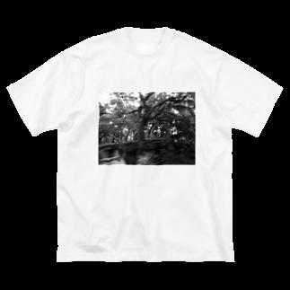 混沌コントロール屋さんの今回混雑膨らむ Big silhouette T-shirts