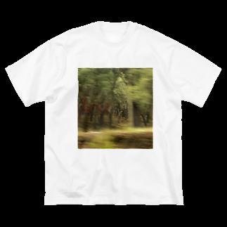 混沌コントロール屋さんのF1 Big silhouette T-shirts