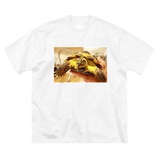 「ホントはかわいい」ロシアリクガメのサロンちゃんグッズ Big silhouette T-shirts