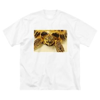 「おふろでまったり」ロシアリクガメのサロンちゃんグッズ Big silhouette T-shirts