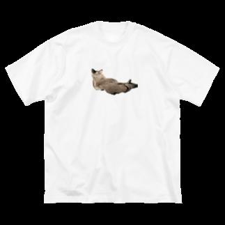 鉢のれーおん Big silhouette T-shirts