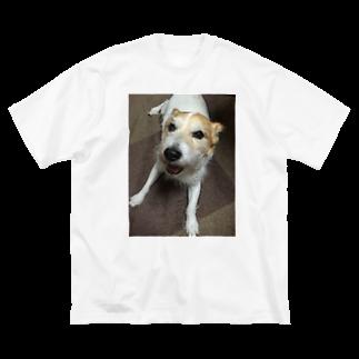 リョウガ!!☠️の癒し犬 Big silhouette T-shirts