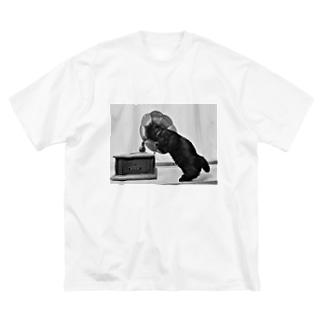 安定感企画 猫編No.1 キング Big silhouette T-shirts