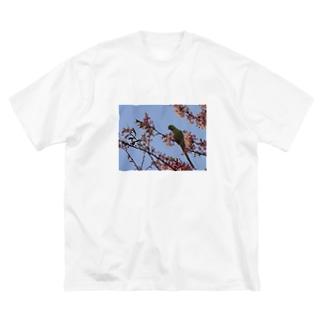 春、桜とワカケホンセイ Big silhouette T-shirts
