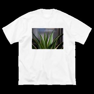 写真プリントのアガベ Big silhouette T-shirts