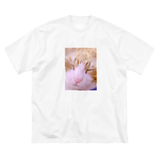 昭和~平成~令和系のりさぴん@の保護猫 セサミくん Big silhouette T-shirts