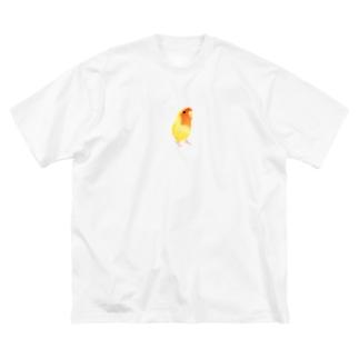 コザクラインコ おすましルチノー【まめるりはことり】 Big silhouette T-shirts