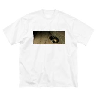 アンコールワットのネコ Big silhouette T-shirts