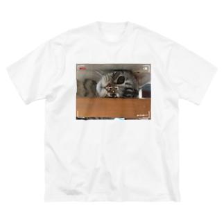 猫のロズ君_ねこネコcatの猫のRoz-kun Big silhouette T-shirts