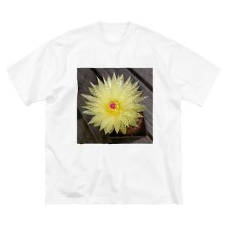 サボテンの花 Big silhouette T-shirts