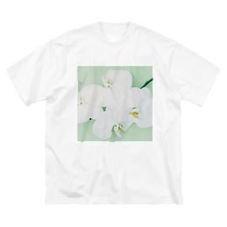 harucamera コチョウラン-2 Big silhouette T-shirts