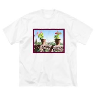 スペイン:トレドの遠景写真 Spain: Toledo Big silhouette T-shirts