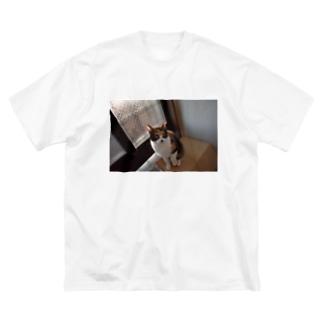 シェリbig1⃣ Big silhouette T-shirts