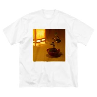 苔玉 Big silhouette T-shirts