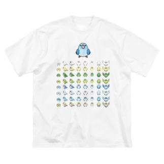 整列マメルリハ隊【まめるりはことり】 Big silhouette T-shirts