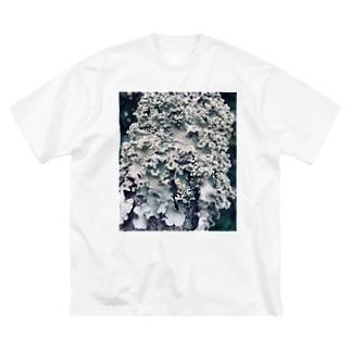 地衣 Big silhouette T-shirts