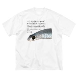 街のいろどりのニシアフリカクロキヘビ Big silhouette T-shirts