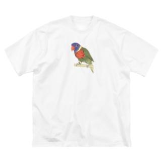 色合いが綺麗なゴシキセイガイインコちゃん【まめるりはことり】 Big silhouette T-shirts