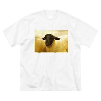 顔が黒いヒツジ Big silhouette T-shirts