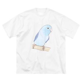 おしゃまなマメルリハのるりちゃん【まめるりはことり】 Big silhouette T-shirts