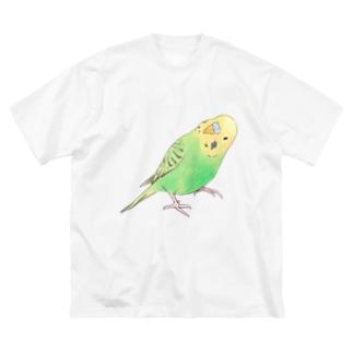 首傾げセキセイインコ ピーちゃん【まめるりはことり】 Big silhouette T-shirts