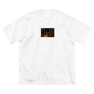 photoglish Big silhouette T-shirts