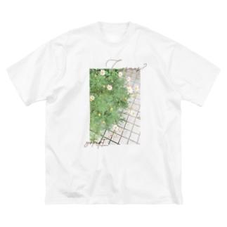 Cosmos? Big silhouette T-shirts