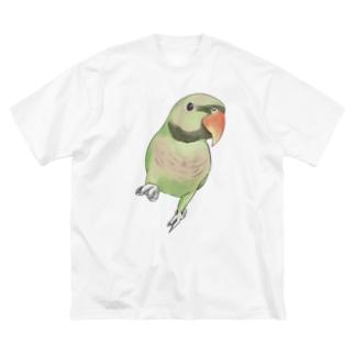 ご機嫌なダルマインコちゃん【まめるりはことり】 Big silhouette T-shirts
