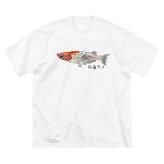 めだか(紅白ラメ) Big silhouette T-shirts