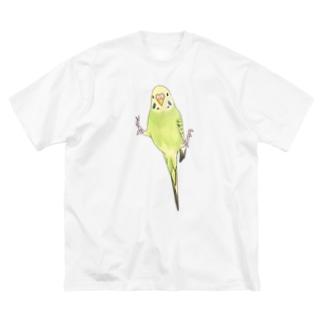 ピタッとセキセイインコちゃん【まめるりはことり】 Big silhouette T-shirts