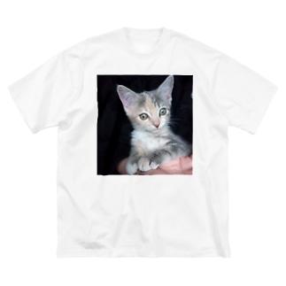 アイテム サンプル Big T-shirts