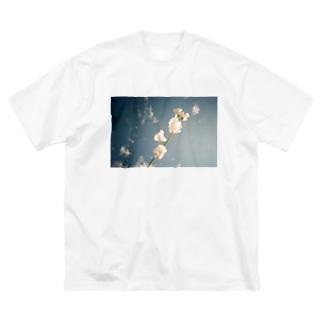 スイートピー Big silhouette T-shirts