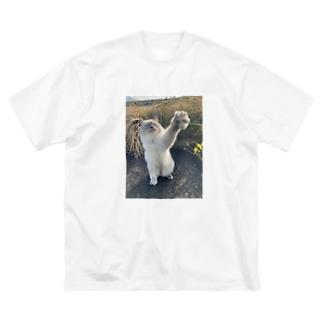手を伸ばすぴーすけ Big silhouette T-shirts