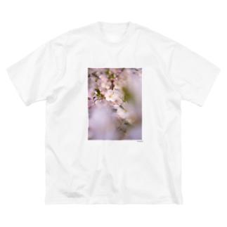 SAKURA 2 Big silhouette T-shirts