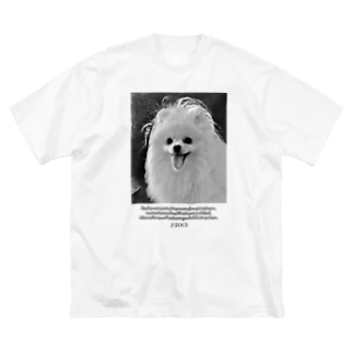 P.FOCA TEE Big silhouette T-shirts